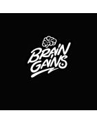 BRAIN GAINS Nootropics Schweiz